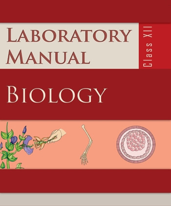 Biology Lab Manual / Class 12 - NCERT Book